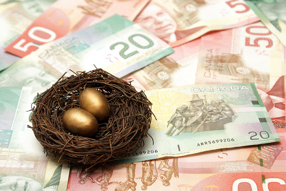 creative image showing the family nest egg of Canadian pension and RRSP monies